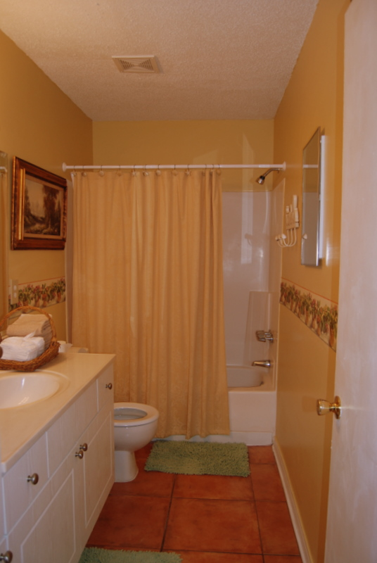Temporary Housing - The Master Bathroom